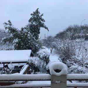 My garden ! snow snowstorm garden france music